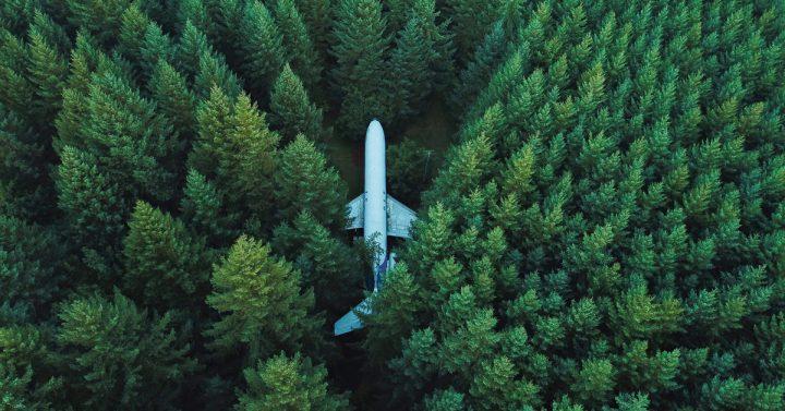 Plane in a forest by David Kovalenko